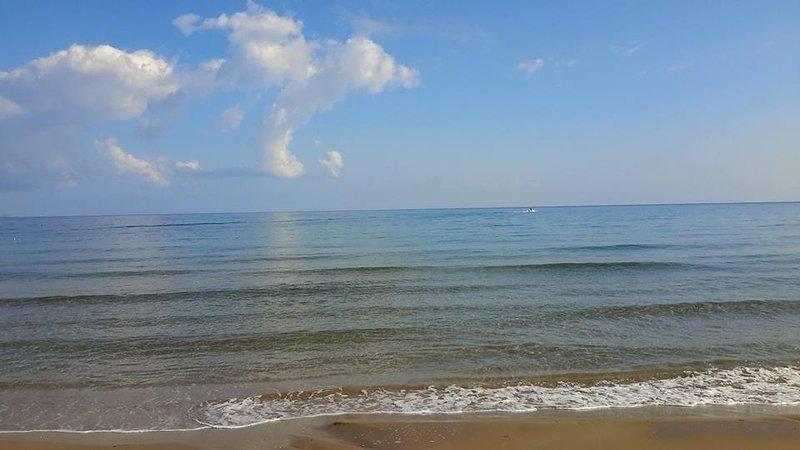 Local beach (100m away)