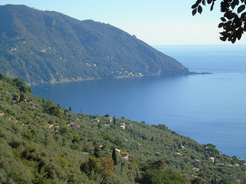 DEPENDANCE BELVEDERE, vacation rental in Avegno