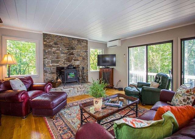 Salon w / TV et cheminée en bois