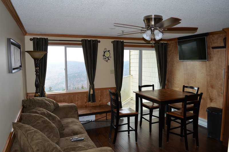Ski IN/OUT DELUXE King bed-Center Village, vacation rental in Snowshoe