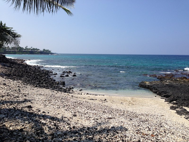 costa de Kona