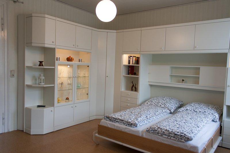 Living / bedroom