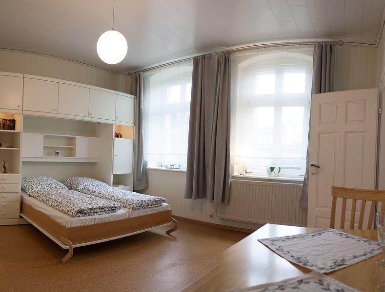 Salon / chambre à coucher