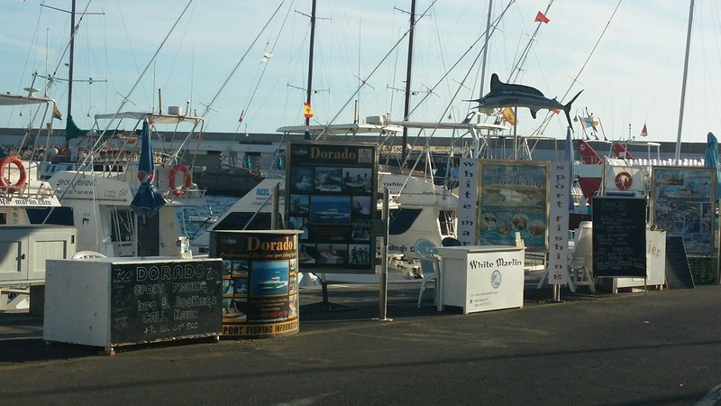 there is fishing charters in the harbour , Sport fishing .
