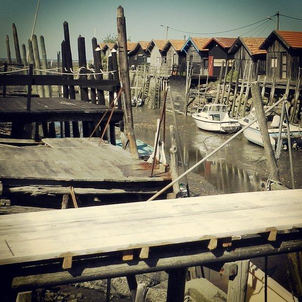 Port ostrica