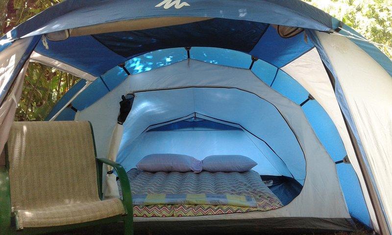 Big Banana Campground ' Cherry ', vacation rental in Saint Patrick Parish