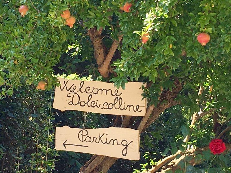 Borgo Dolci Colline Castiglion Fiorentino (Ar) Tuscany
