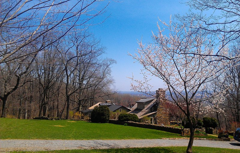 Idyllic Restored 18c cabin Not Available! Wine country! Views*All Amenities., holiday rental in Loudoun County