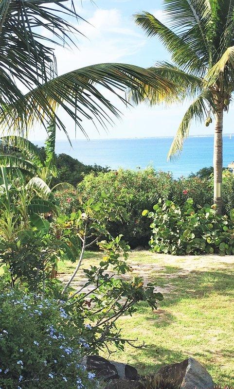 Vue depuis la terrasse du cottage cocotier - La vie est belle