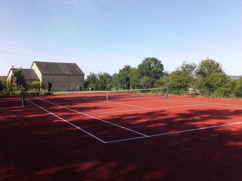 Groot vakantiehuis  met eigen tennisbaan en zwembad, vacation rental in Asnan