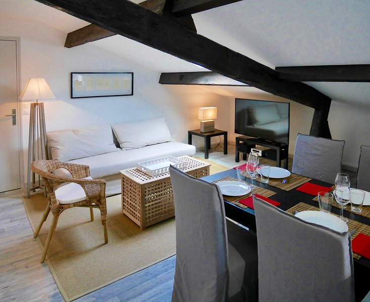 Appartement de charme au coeur de Bergerac, holiday rental in Bergerac City