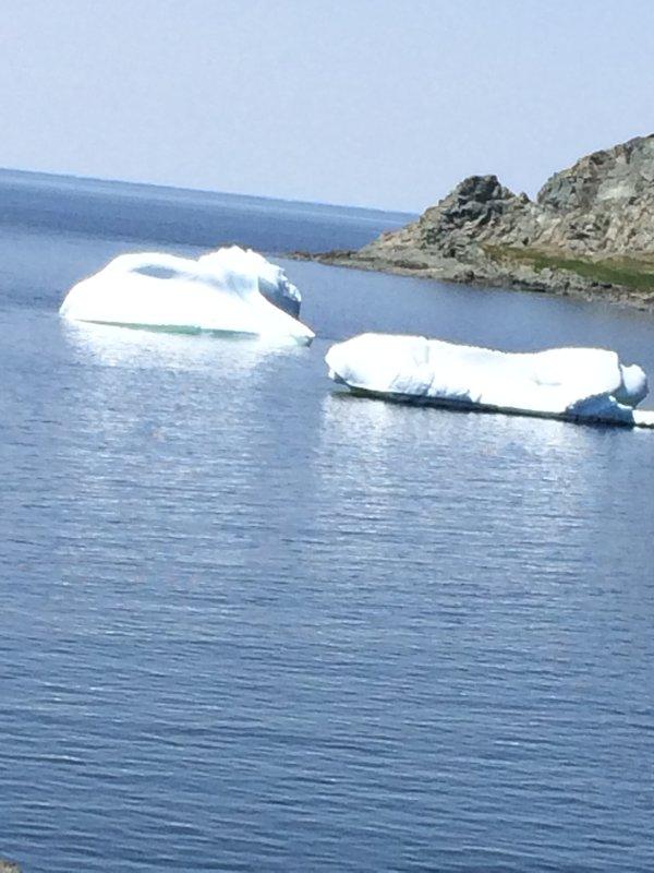 burgs de hielo en el puerto de julio de el año 2015