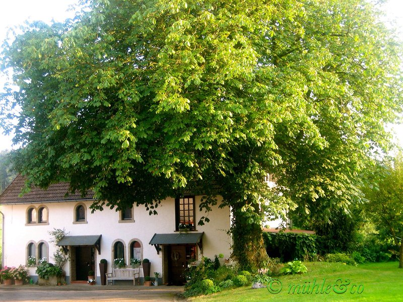 The stucco mill (Hofansicht)