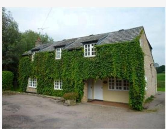 Drove Cottage, holiday rental in Hockwold cum Wilton