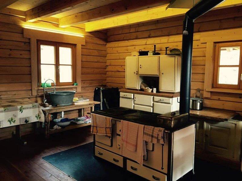 Cuisiner dans une cabane en rondins