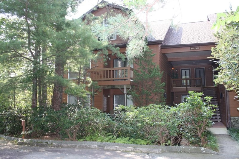 North Carolina Mountain Condo, Ferienwohnung in Lake Toxaway