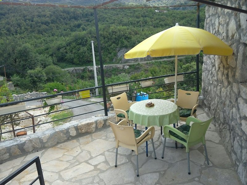 1 apartments in Holiday home ''Pavle'', holiday rental in Danilovgrad