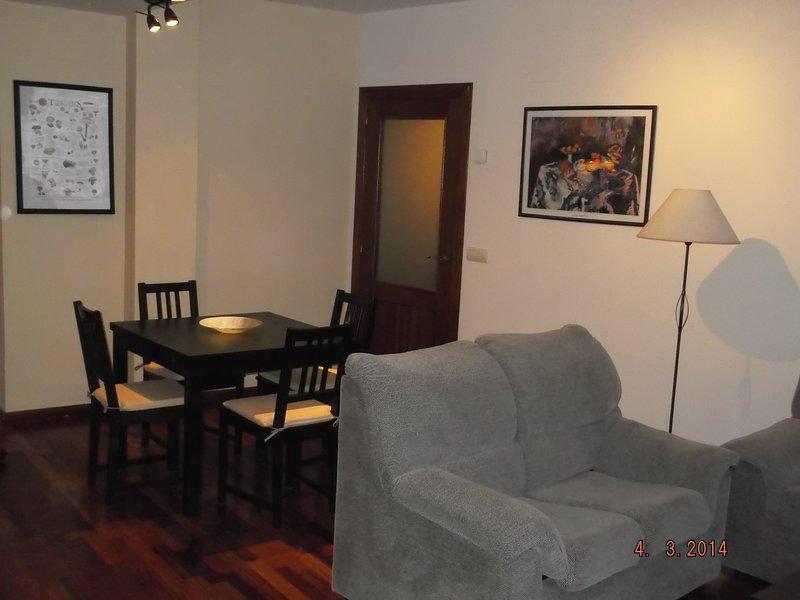 Apartamento en Pirineos, Los 3 Valles, vacation rental in Denuy