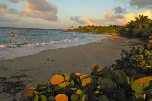 Sunset at our local beach, El Gallito.