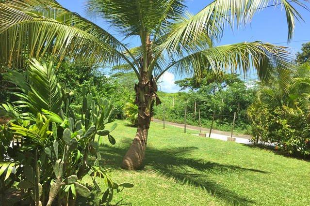 soleado patio delantero de la Casa Baraka!