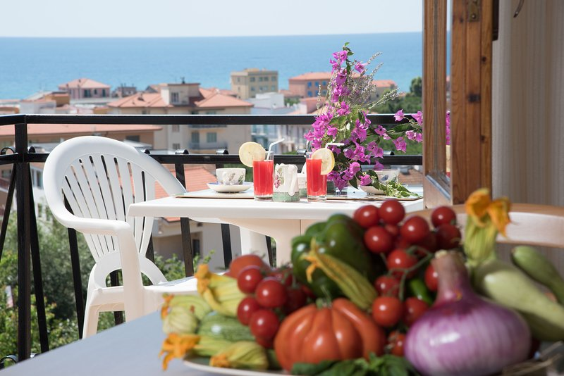 Studio 22 m² - Balcony with nice sea view - Parking - Air conditioning - Wifi, vacation rental in Borghetto Santo Spirito