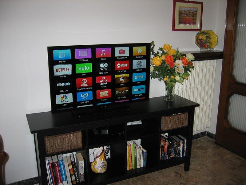 centro de entretenimento tem TV de 40 polegadas tela plana, DVD player, Apple TV, e LIVRE de alta velocidade wi-fi.