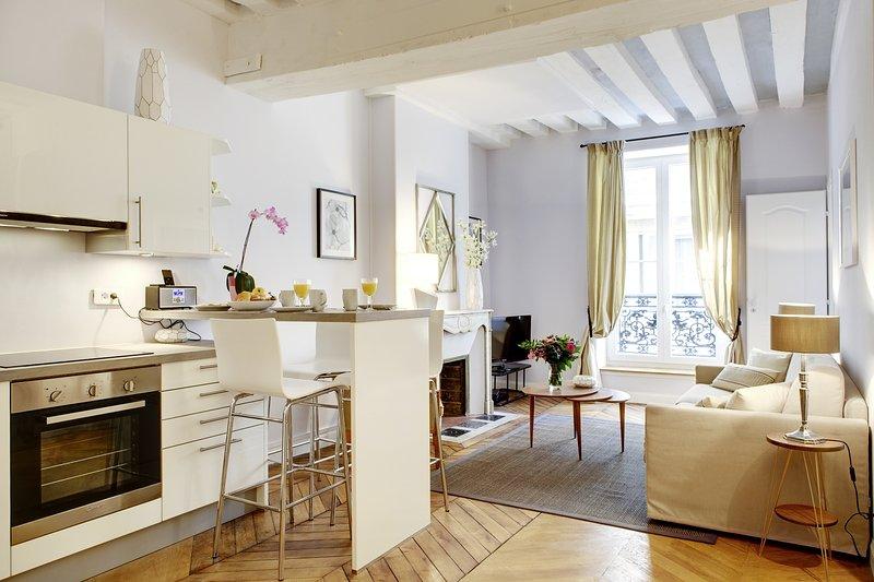 Apartment Chapon Paris Apartment 3rd Arrondissement 2 Bedroom Short