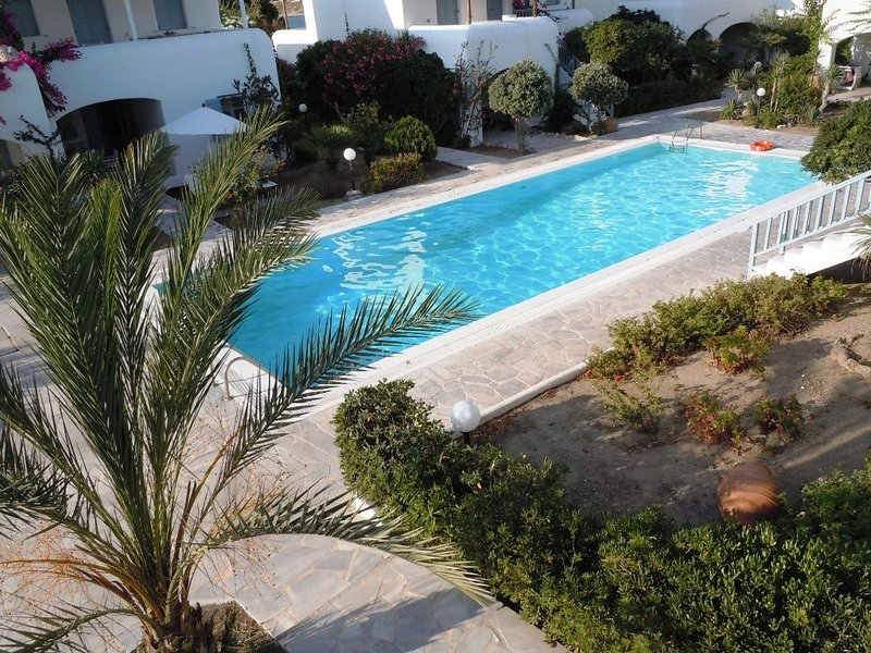Anthos house steps from ornos beach 3 bedroom house - Summer house with swimming pool review ...
