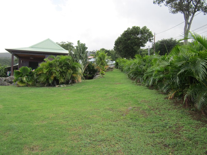 El ágata jardín
