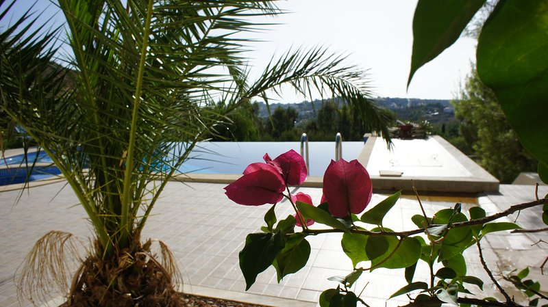 Villa Apartment + swimming pool 15' from Airport, vacation rental in Penteli