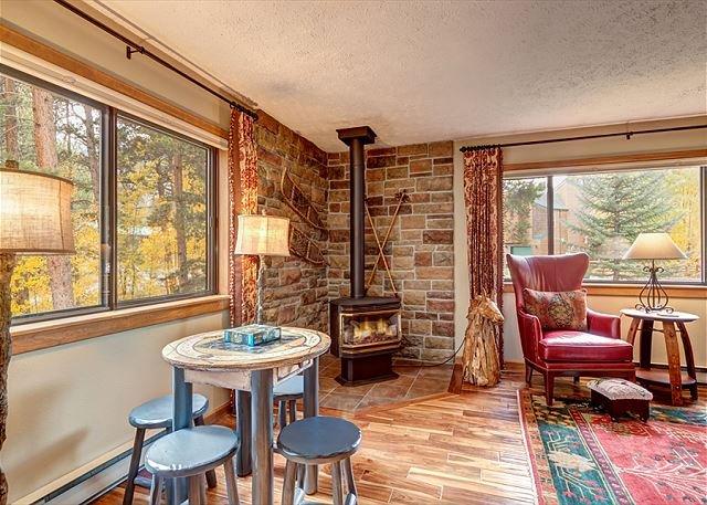 Casa De Montagne Living Area Frisco Logement Locations de Vacances