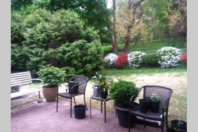 large idyllic and quiet backyard