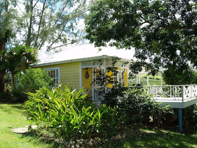 Gingerbread 2 Bed with Pool, vacation rental in Barbados