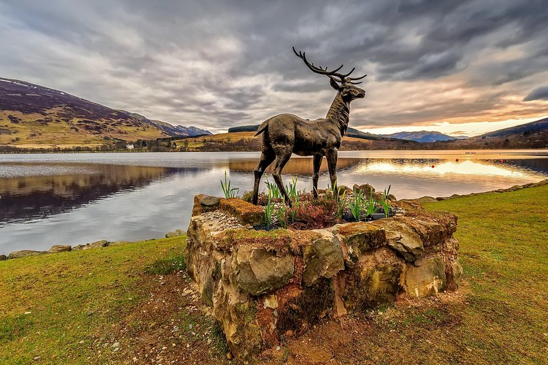 Stan The Stag ornamental feature in Briar Cottages 250ft garden on Loch Earn