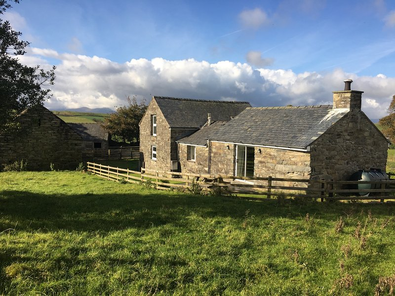 Orsedd wen cottage has an enclosed garden but you're welcome to walk the surrounding fields.