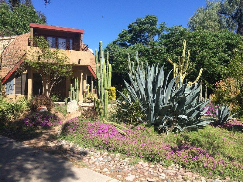 Dome Asylum front cactus garden