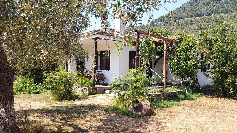 Golden Beach Villa 1, location de vacances à Skala Panagia