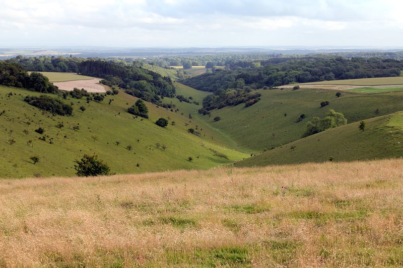 Cranborne Chase, an Area of Outstanding Natural Beauty