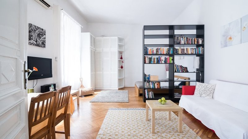 Large Main Room with A/C - Apartment beside the Danube