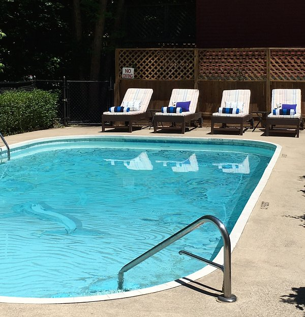 Sherwood Forest Pool