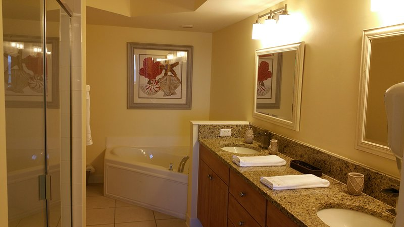 Master Bedroom Bathroom with Walk In Shower and Large Soaking Tub