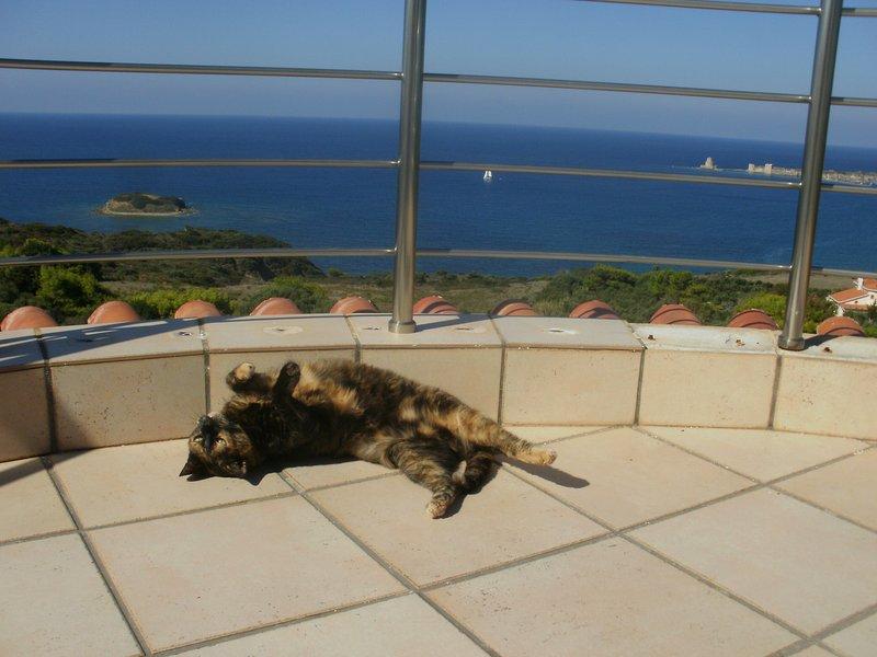 Methoni-Charly Point Villa,1 room ground floor/1st or 2nd floor/above groundpool, location de vacances à Pylos-Nestor