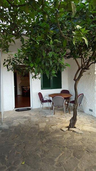 Frente de Apartamento com área de estar no terraço (muito sombra proporcionada pelas árvores laranja / limão)