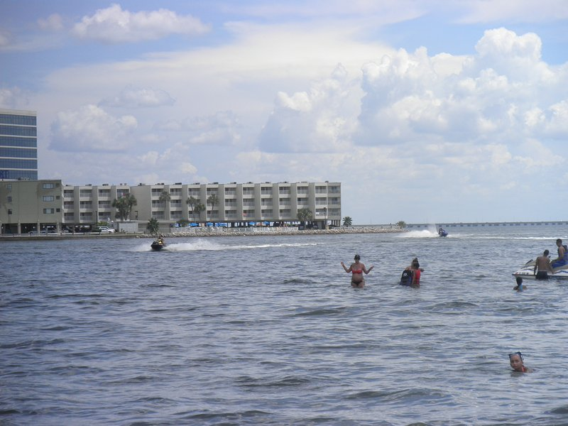 Our Tampa Bay Waterfront Condo (in background) and swimming at nearby Public Beach.