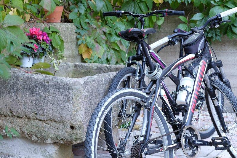 Potrete usare le bici per escursioni nei dintorni o per un giro in città
