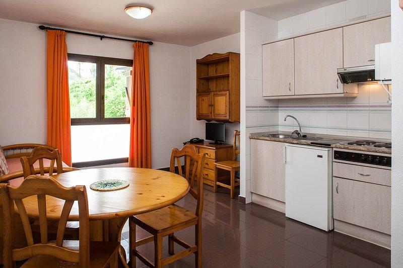 Apartamento de 1 habitacion + salon cocina, alquiler vacacional en Biescas