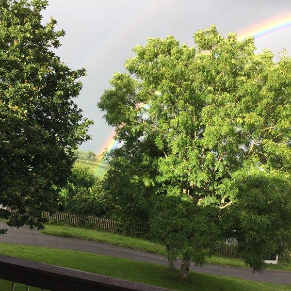 Schöne Bäume und Felder sehen und der Bonus eines Regenbogens, wenn diese gemacht.