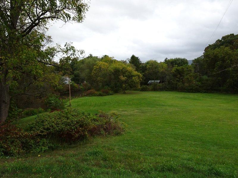 Side Yard area