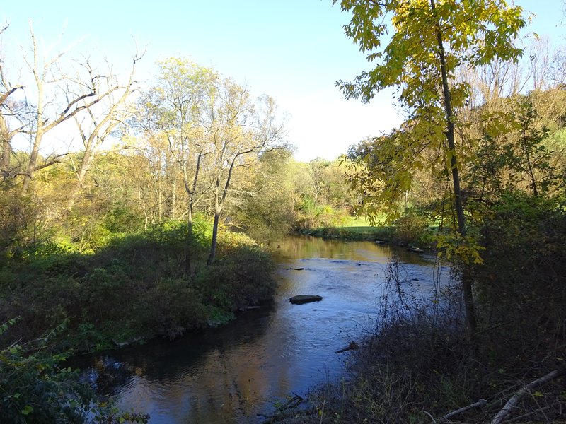 Spring Creek from the deck
