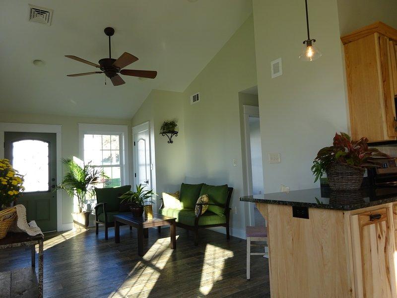 Open floor living room area.  Plank Tile flooring through main living area